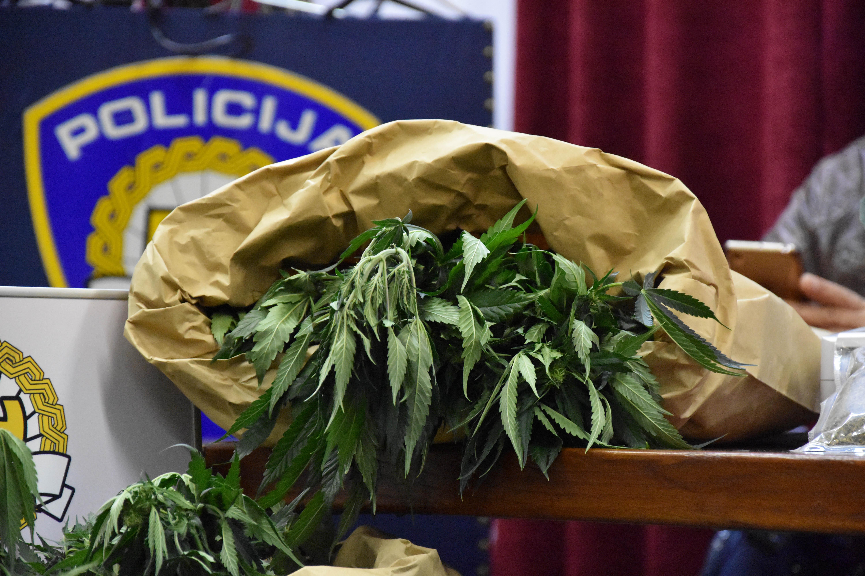 Od svih zapljena droga u Hrvatskoj, 65 posto odnosi se na marihuanu / Foto A. SITNICA