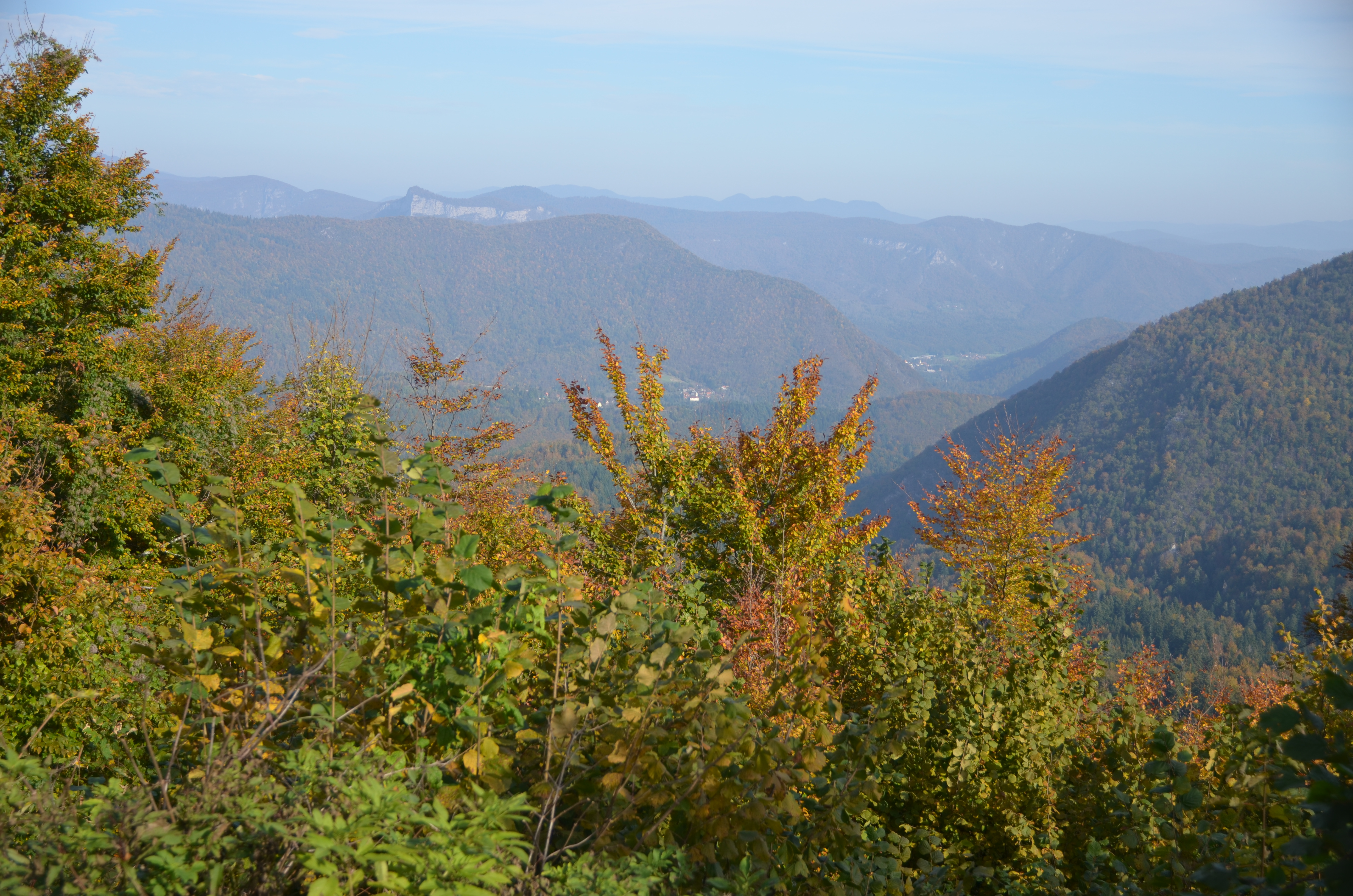 Šuma prekriva 85 posto teritorija Gorskog kotara / Snimio Marinko KRMPOTIĆ