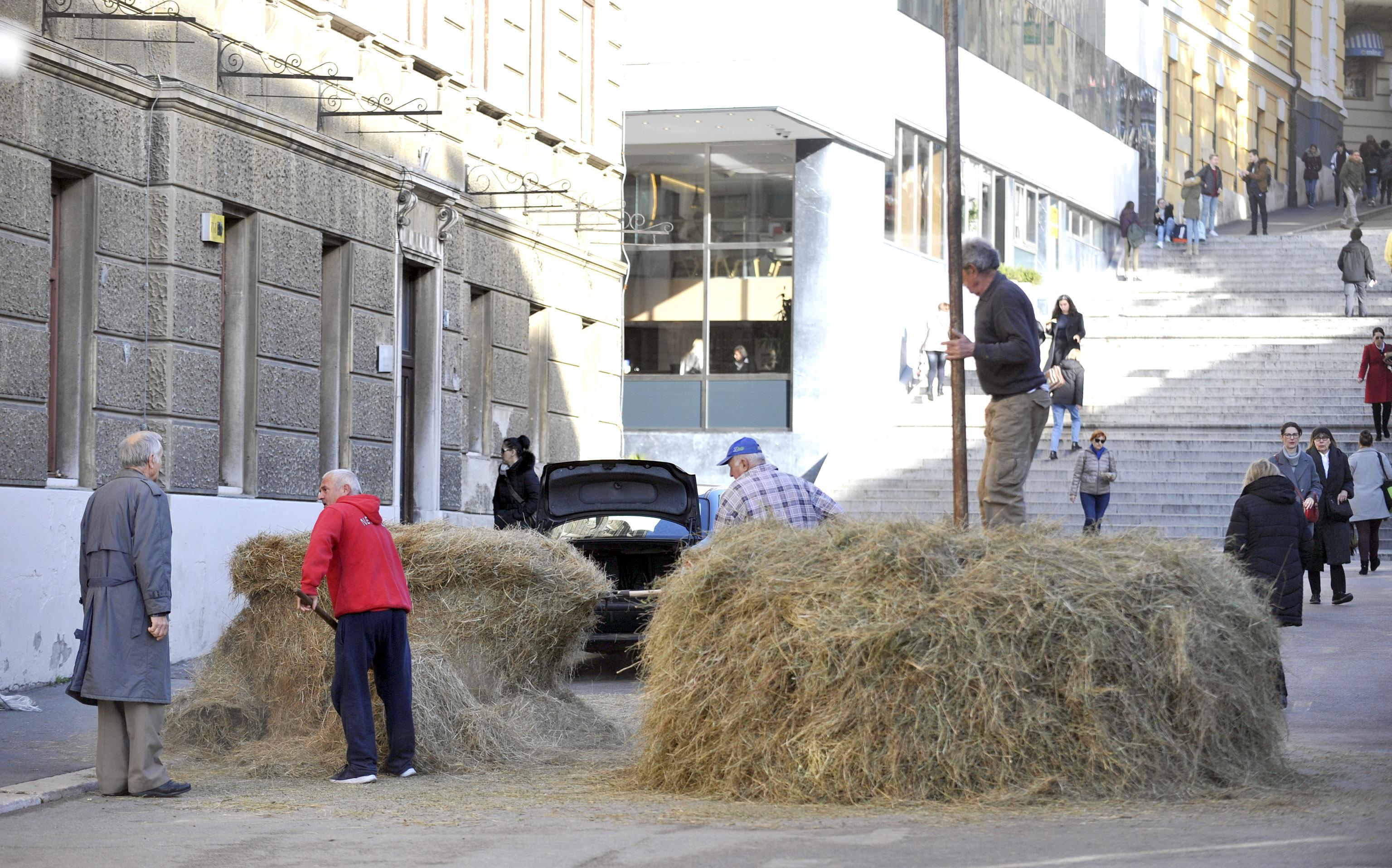 Ponovno postavljanje Stoga sijena na Trgu 128. brigade / Snimio Vedran KARUZA