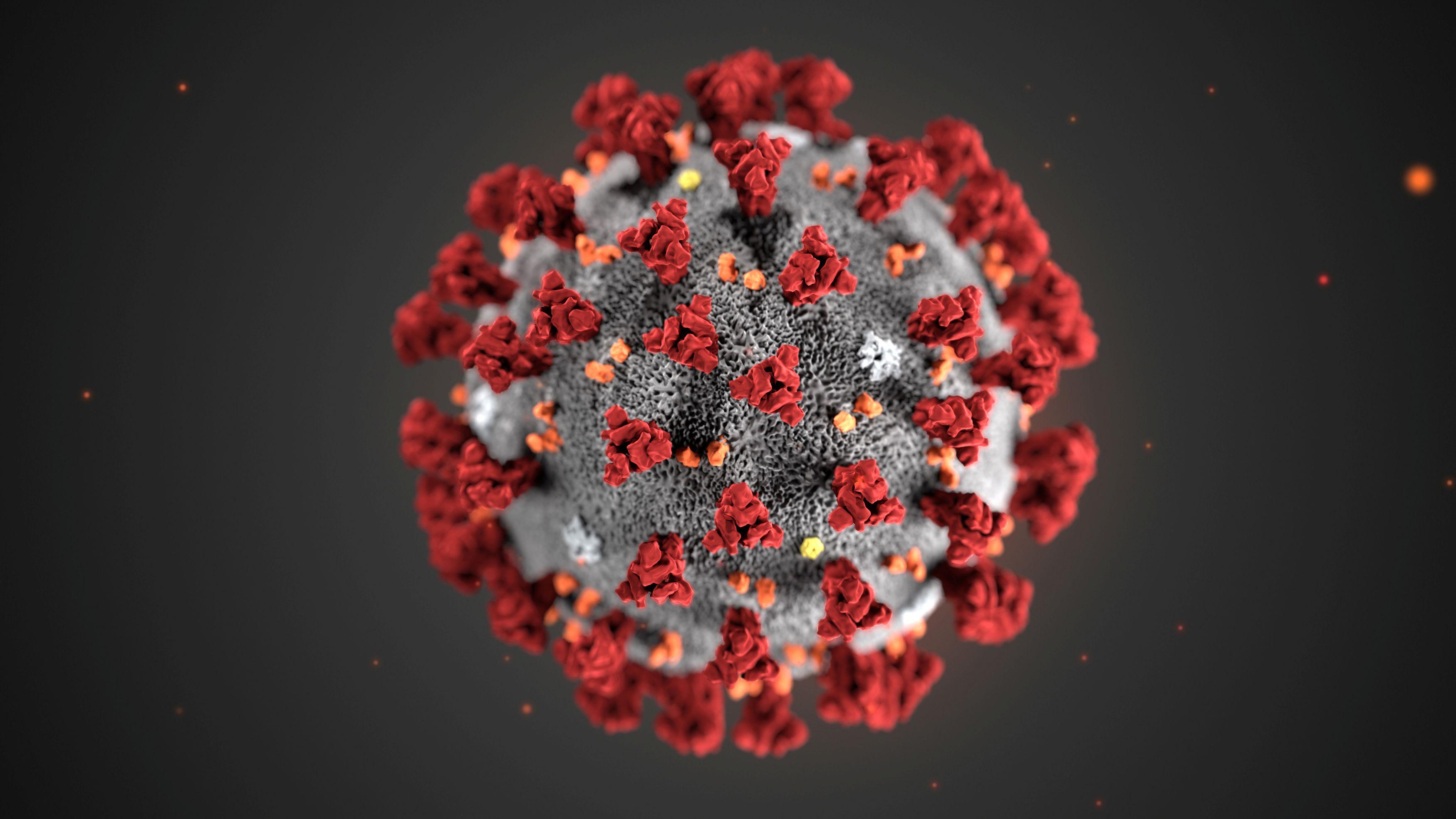Strukturalni model koronavirusa / Reuters