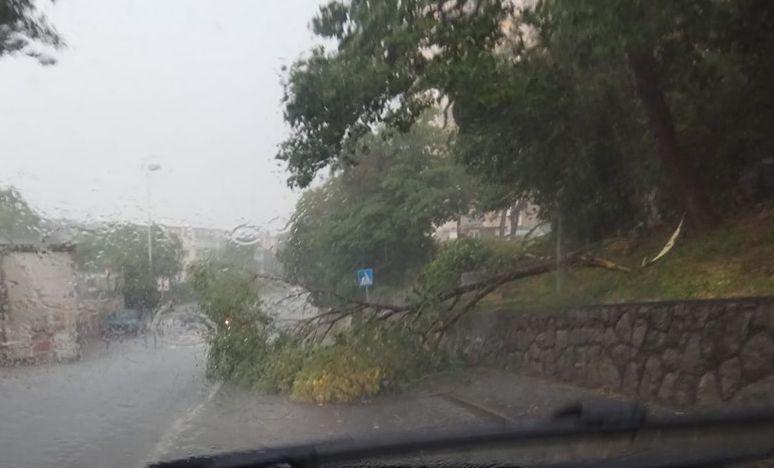 Srušeno stablo na Turniću / Foto Problemi u prometu - Rijeka i okolica / Facebook