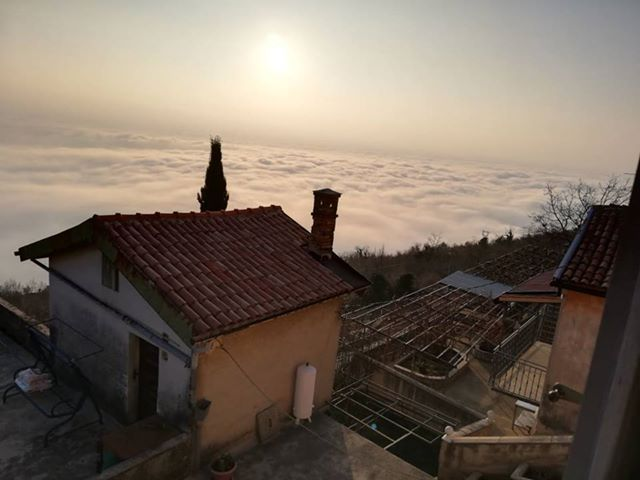 Foto Diana Janjetić