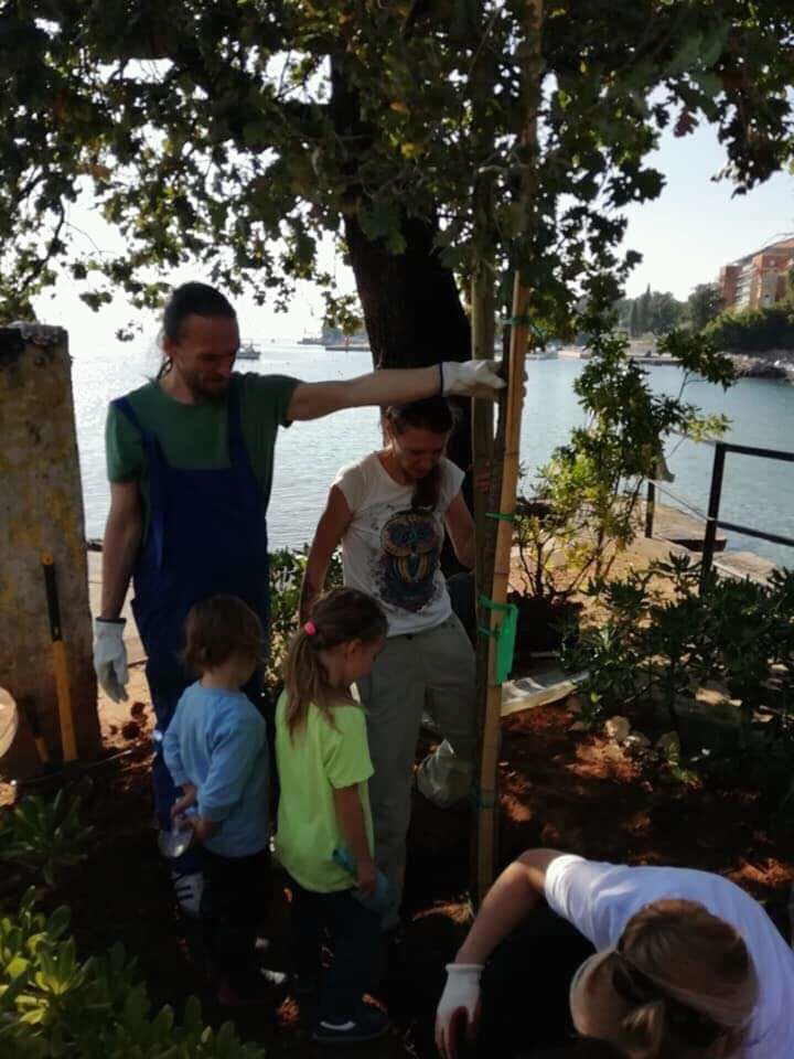 Sadnja stabala na Tomaševcu / Foto Facebook