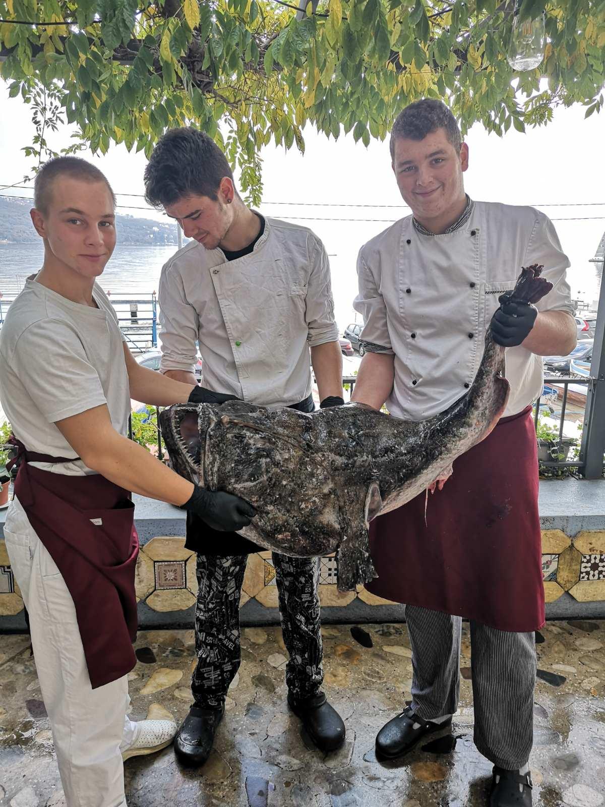 Raža od 30 kilograma završila je u vološćanskom restoranu Veranda