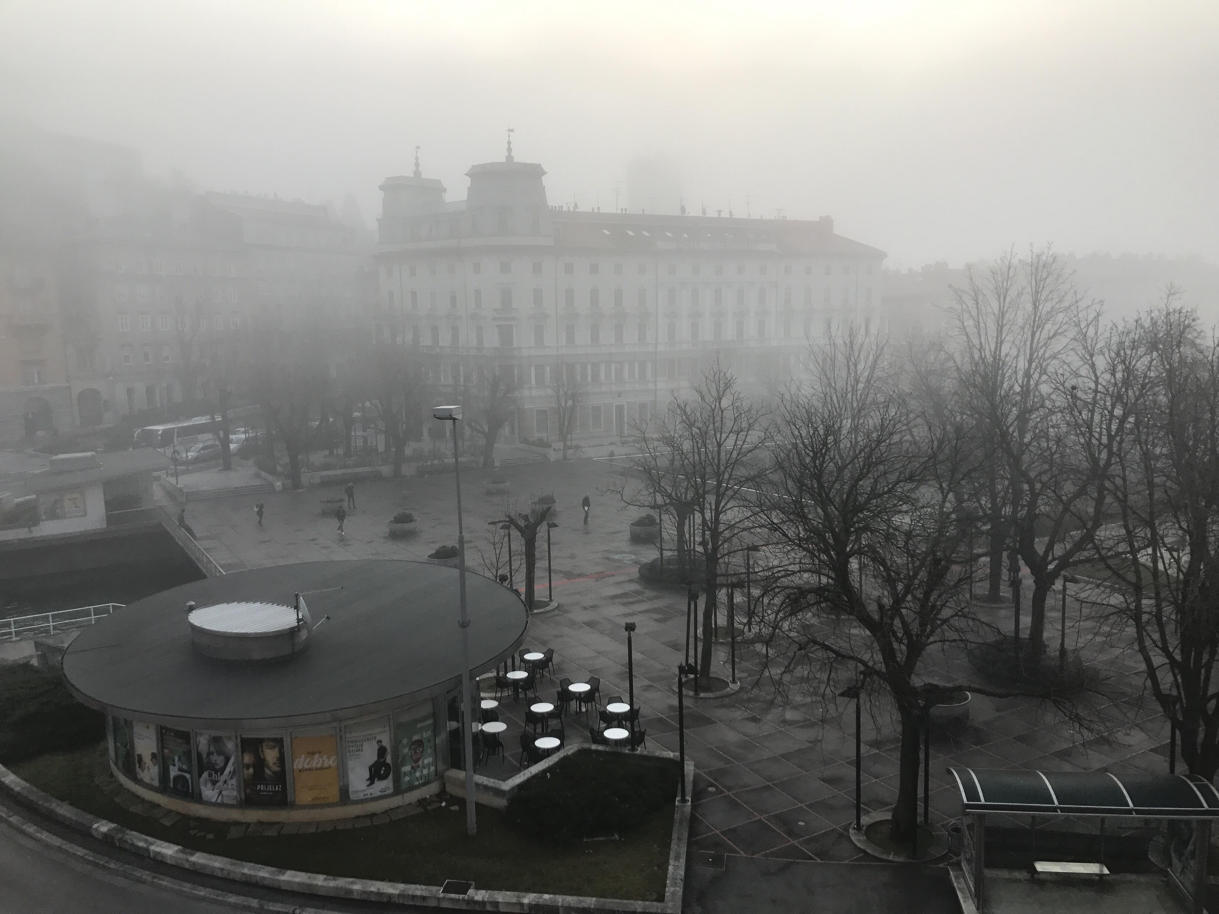 Foto Vesna Švegović