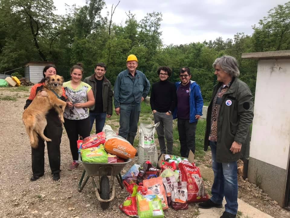 Prikupljanje pomoći za nezbrinute pse i mačke u Kastvu, Foto NS Reformisti Kastav