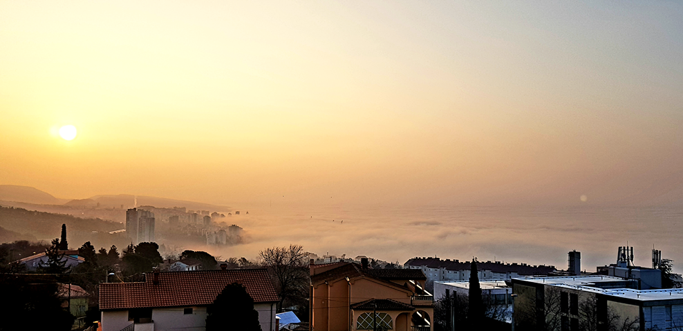 Foto Petra Gazić