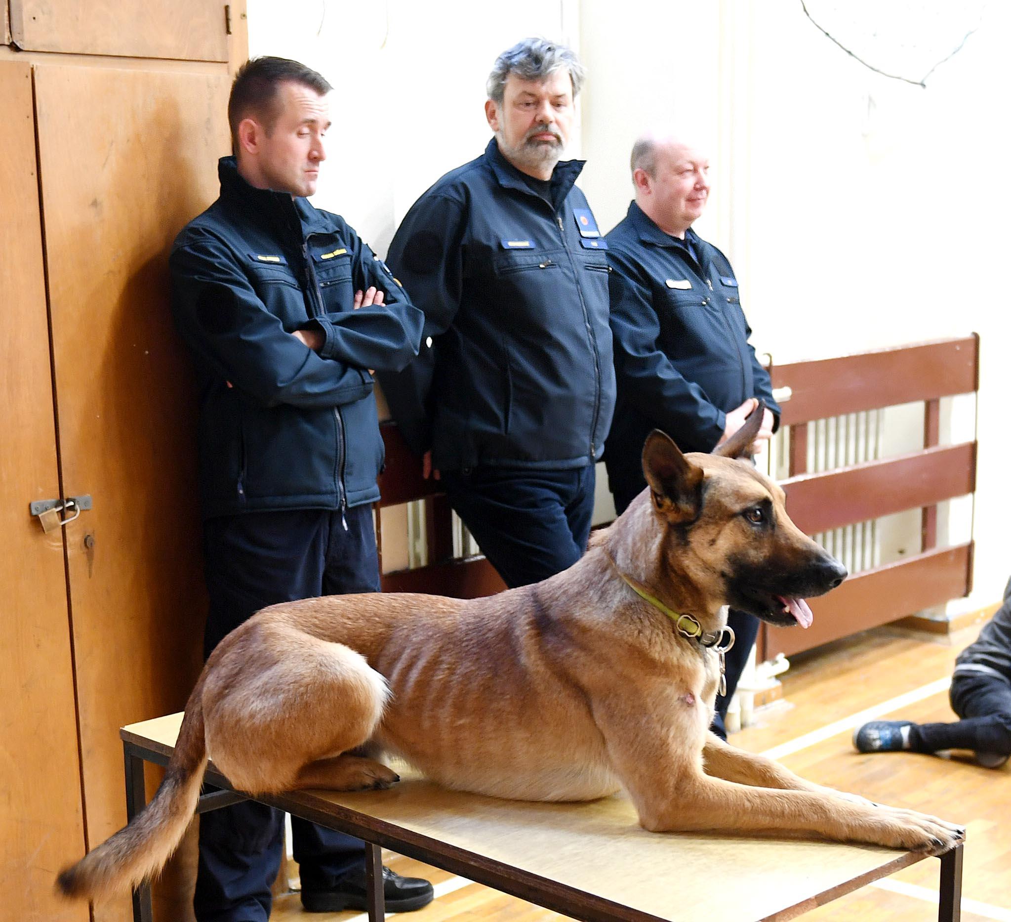 112, hitne službe, civilna zaštita, pas Thomas, belgijski ovčar, snimio Ivica TOMIĆ