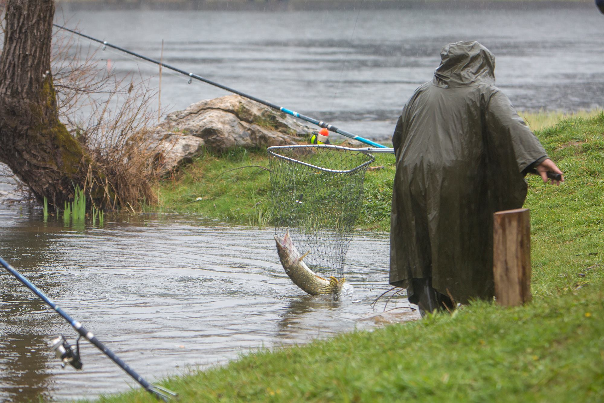 Štukijada, ribolov, snimio Marin SMOLČIĆ