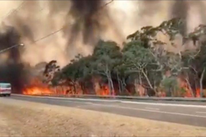 Foto NSW Rural Fire Service/via REUTERS