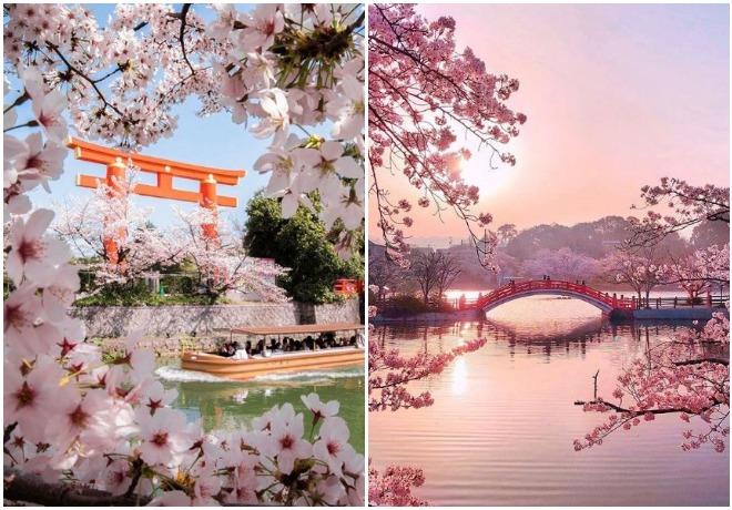 Foto: @japanawaits/ bns_landscape Instagram