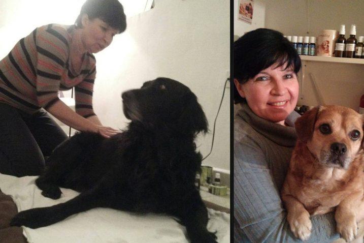 Dr. vet. med. Tanja Majcen, holistički aromaterapeut za pse