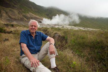 Sir David Attenborough / Foto Robert HOLLINGWORTH