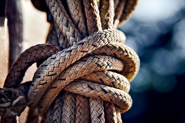 Ilustracija Pixabay
