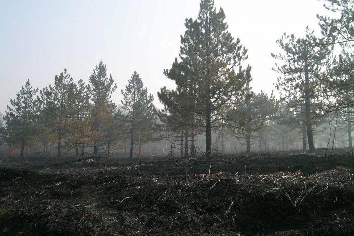 U nekim dijelovima Like požari su posvuda harali proteklih dana  takoskoro  da niti nema više što gorjeti
