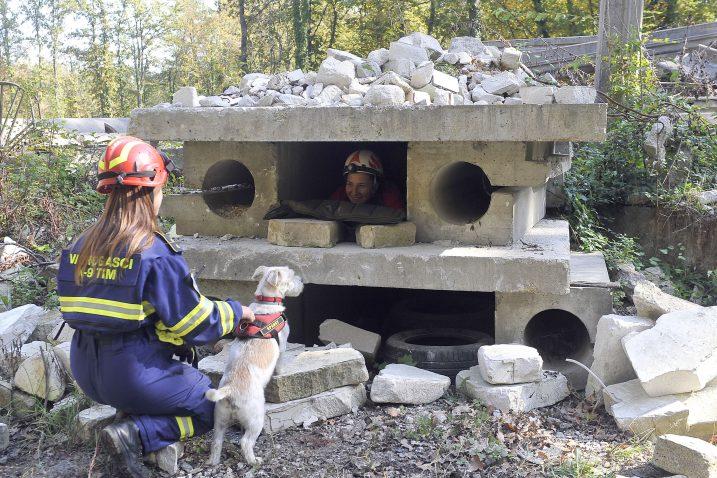 Pas i vodič pristupaju ruševinama, vodič izdaje kratku komandu i – potraga kreće – Lorena Laslavić i njezin Sparky / Snimio Vedran KARUZA
