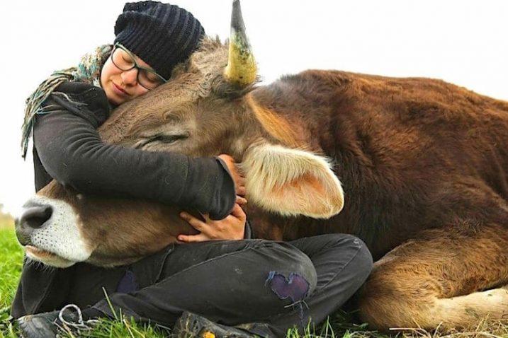 Foto Prijatelji životinja
