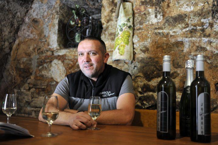 Već šest godina od jarbole radim kvalitetno vino - Franko Ružić / Snimio Vedran KARUZA