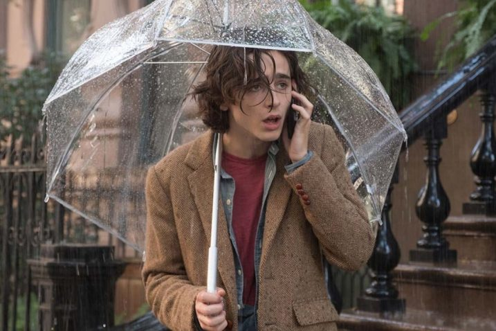 »Kišni dan u New Yorku« W. Allena / Foto ART-KINO CROATIA