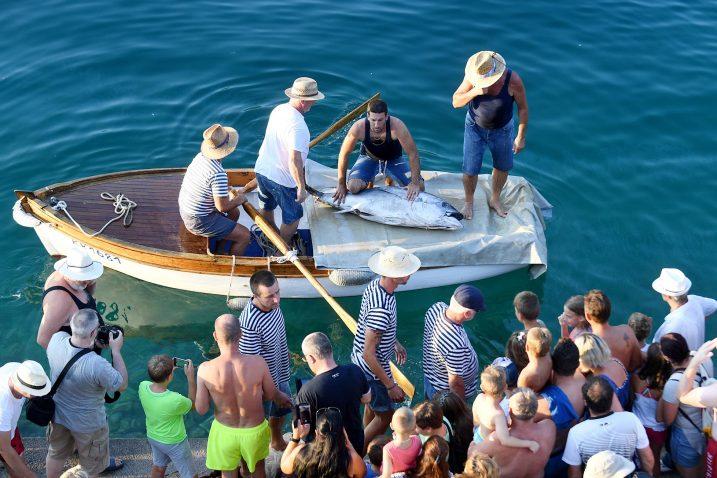 Ulov je bila tuna prethodno ulovljena u sklopu big game fishing natjecanja / Snimio Ivica TOMIĆ