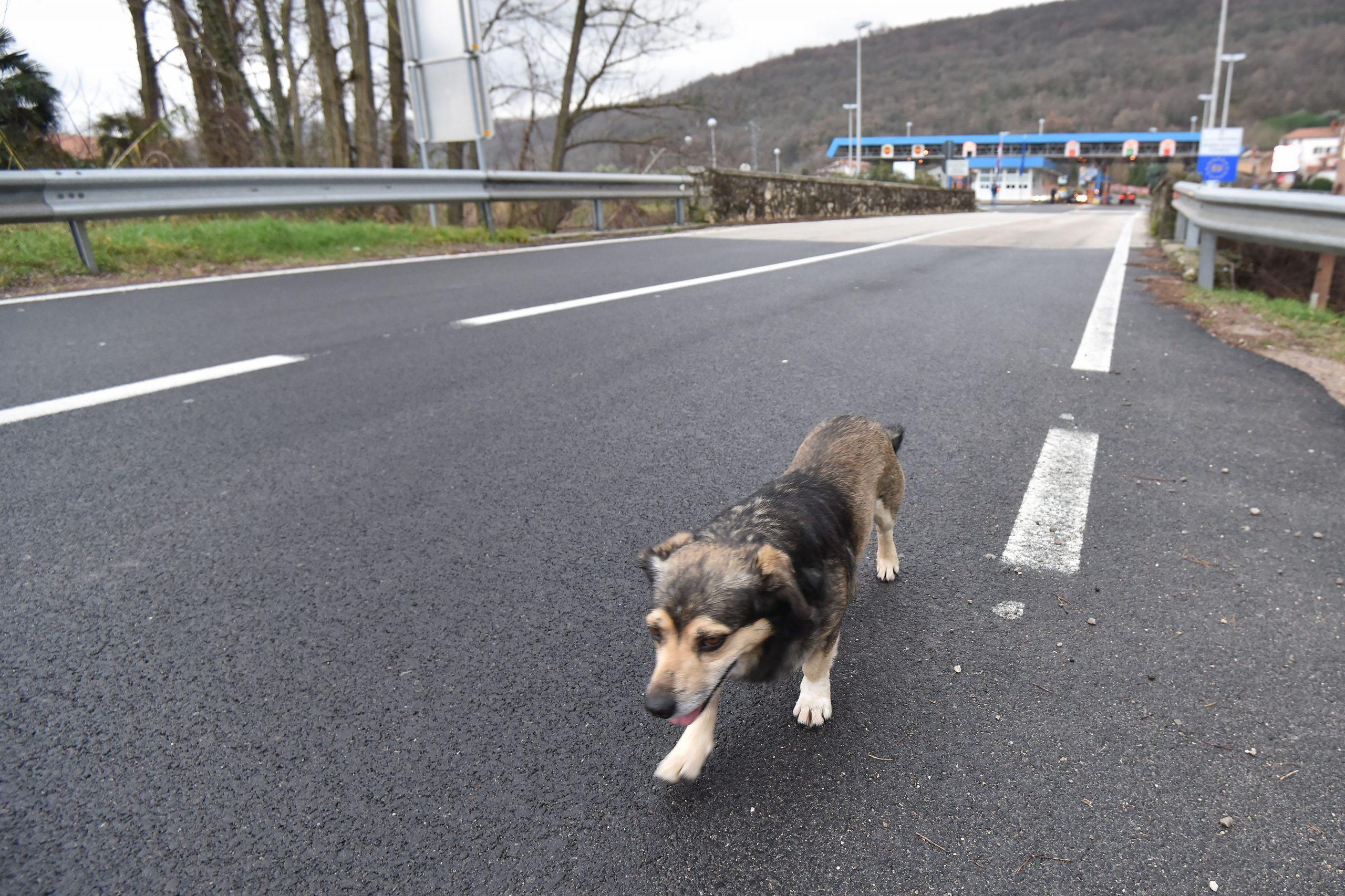 Foto Duško Marušić PIXSELL
