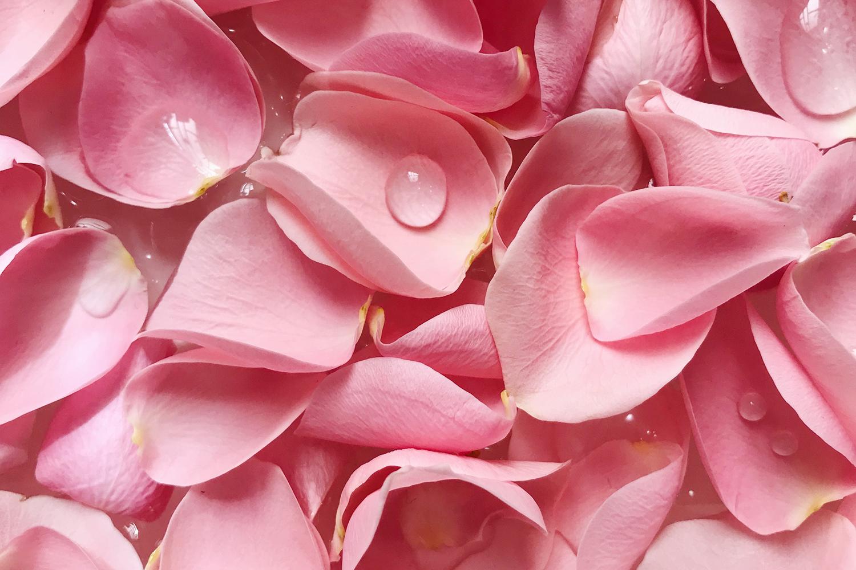 džem-od-ruže