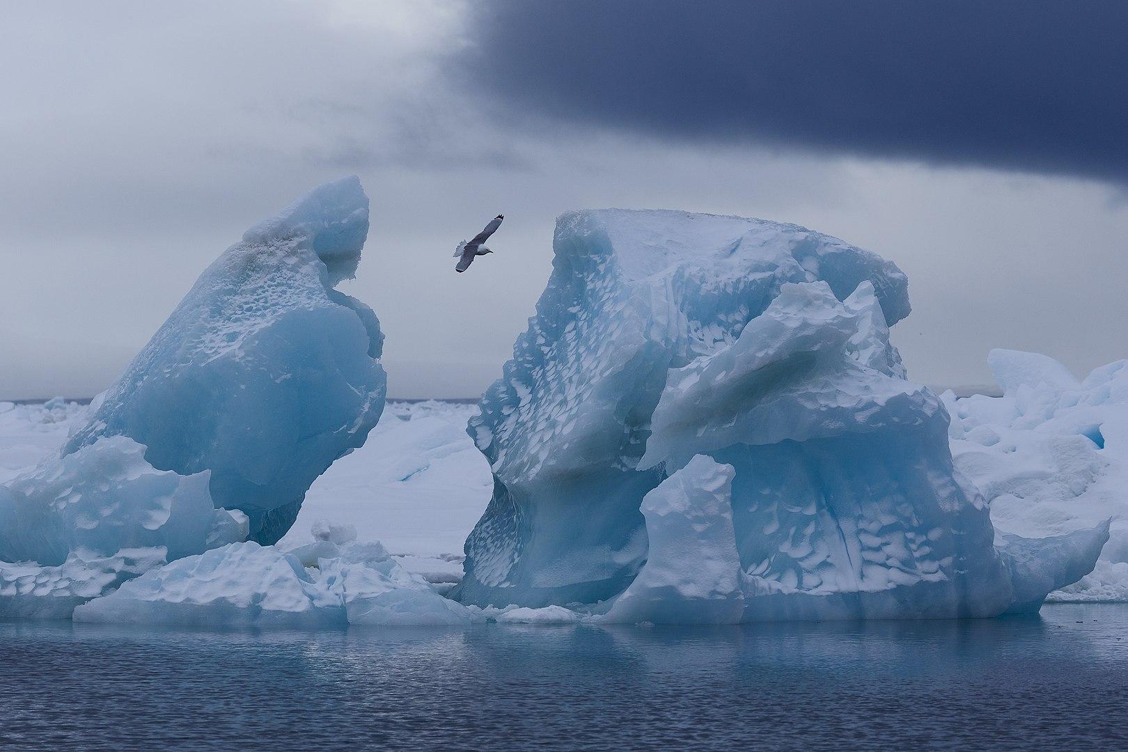 Ledenjak u Zemlji Franje Josipa / Foto Николай Гернет, Wikimedia Commons