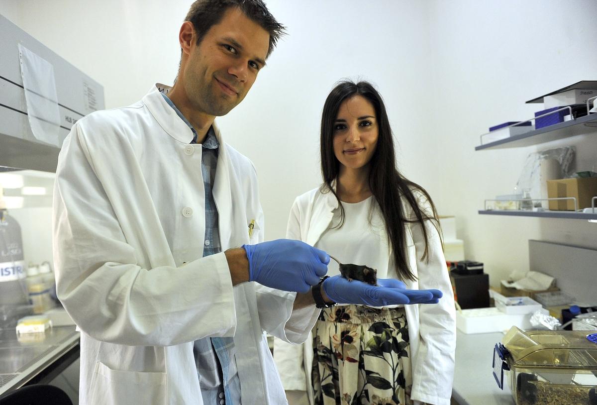 Jedan od odabranih projekata je onaj Felixa Wensveena s Medicinskog fakulteta u Rijeci / Foto Roni Brmalj