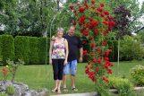 Najljepši primorski vrt obitelji Sokačić u Rukavcu / Snimio Vedran KARUZA