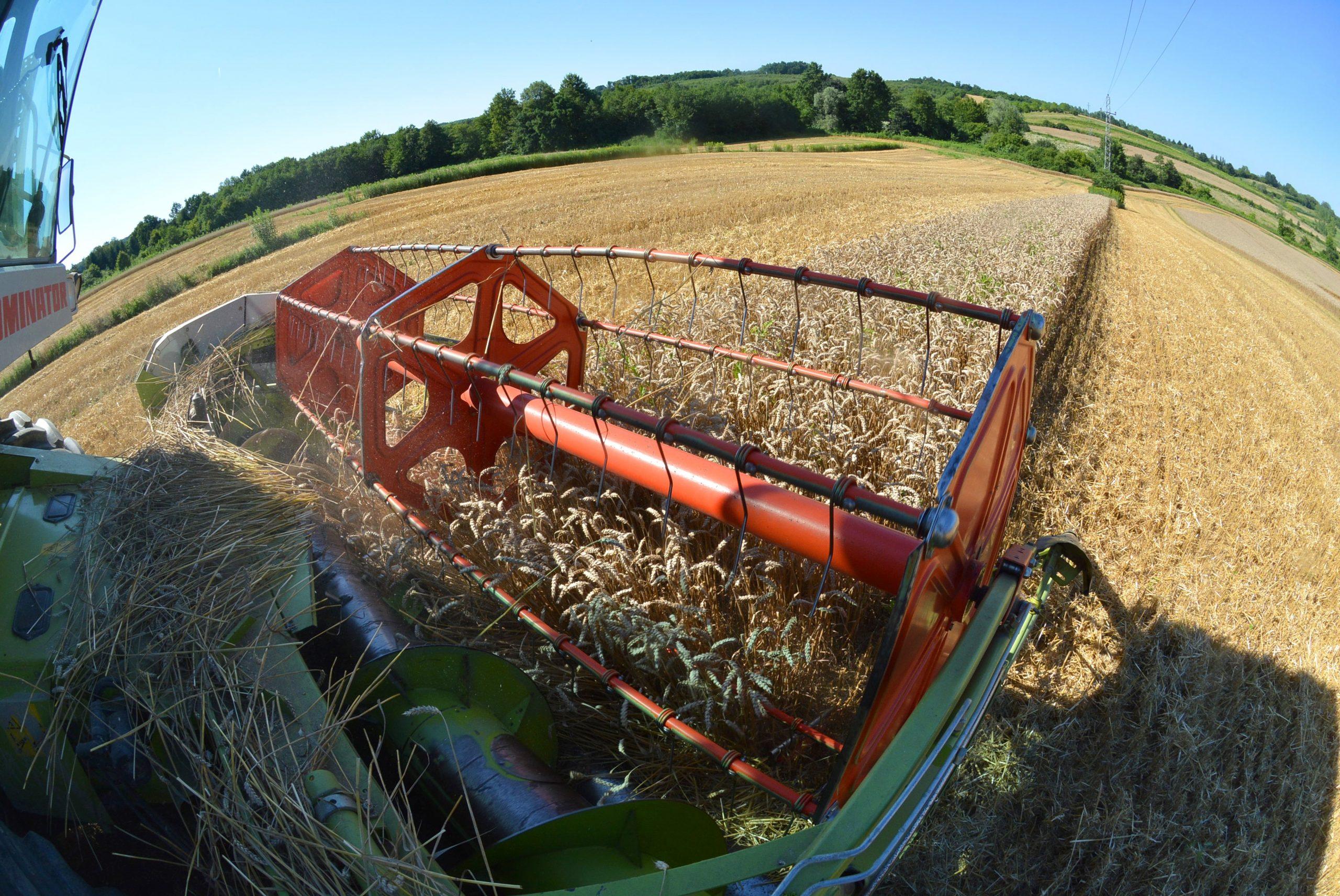 Ilustracija - poljoprivreda / Foto DAMIR ŠPEHAR/PIXSELL