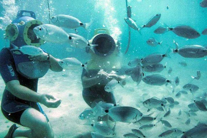 Foto Podvodni park Punat