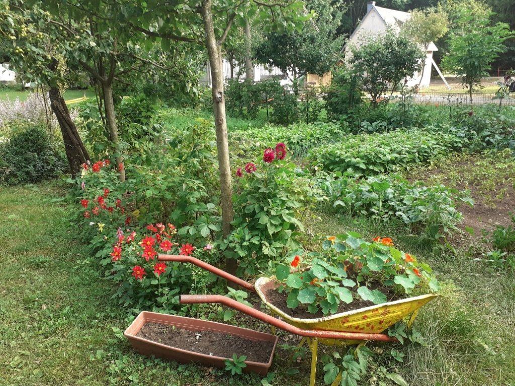 Najljepšim vrtom proglašen je onaj Milice Stanić / Foto TZ VINODOL