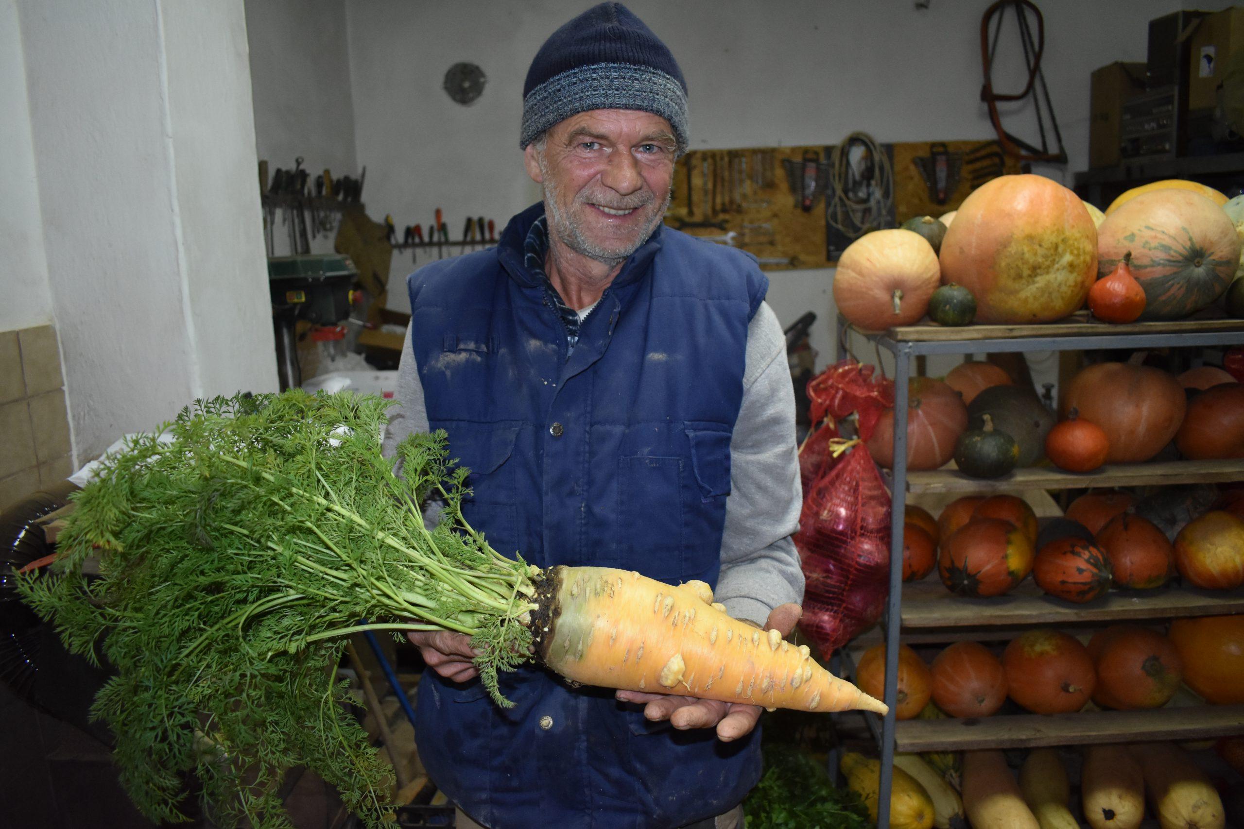Ivica Baričević na svom je imanju uzgojio mrkvu rekorderku