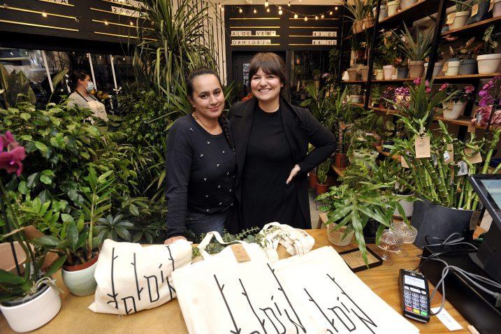 Kristina Poljanić i Marita Bonačić u njihovom hotelu za biljke »Djardin« / Foto Davor KOVAČEVIĆ