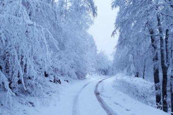 Foto: NP Sjeverni Velebit