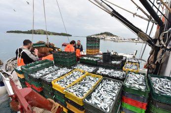 Ribari suglasni u stavu da je gospodarski pojas trebalo proglasiti još 2003. / Foto HRVOJE JELAVIC/PIXSELL