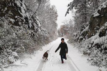 Prava zimska idila na obroncima Učke / Snimila Marina KIRIGIN
