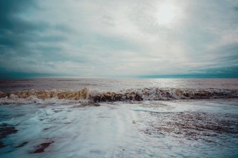 FOTO: Unsplash