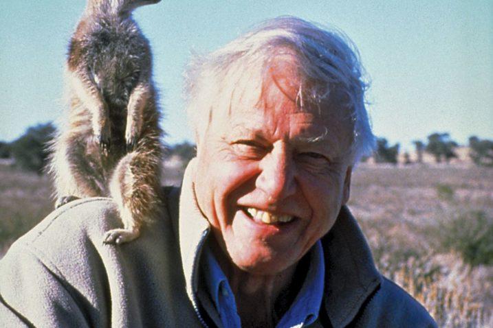 Sir David Attenborough jedno je od najzvučnijih britanskih imena