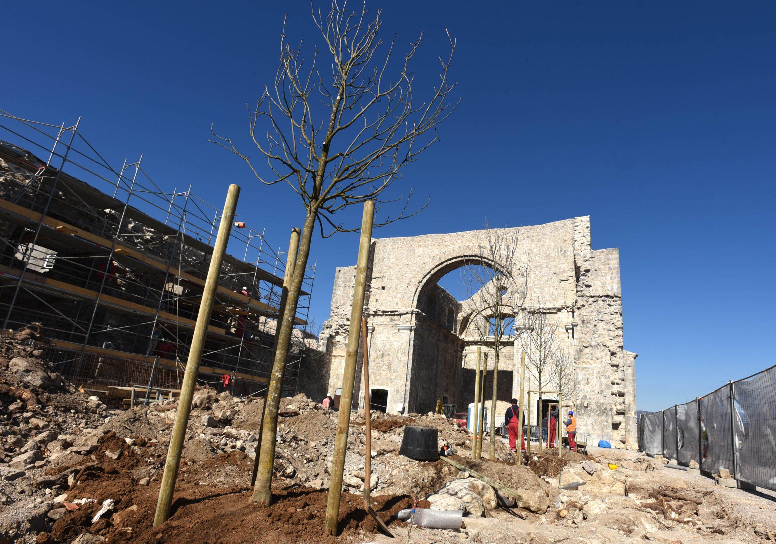 Počela sadnja novih stabala na Crekvini / Foto M. GRACIN
