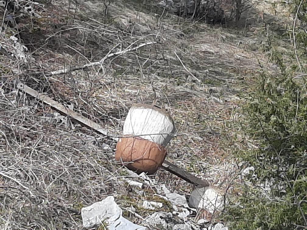 Jedna od uništenih skulptura gljiva