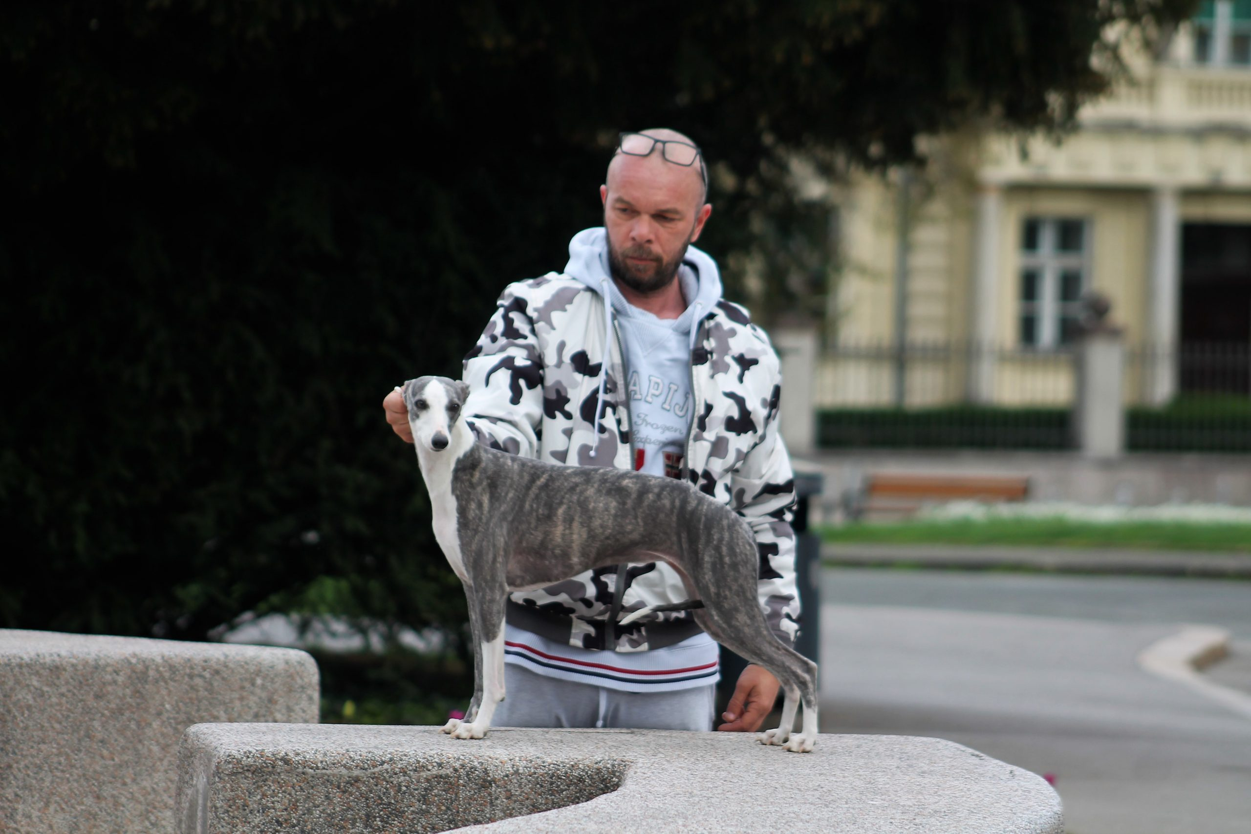 Foto: Nataša KOVAČIĆ