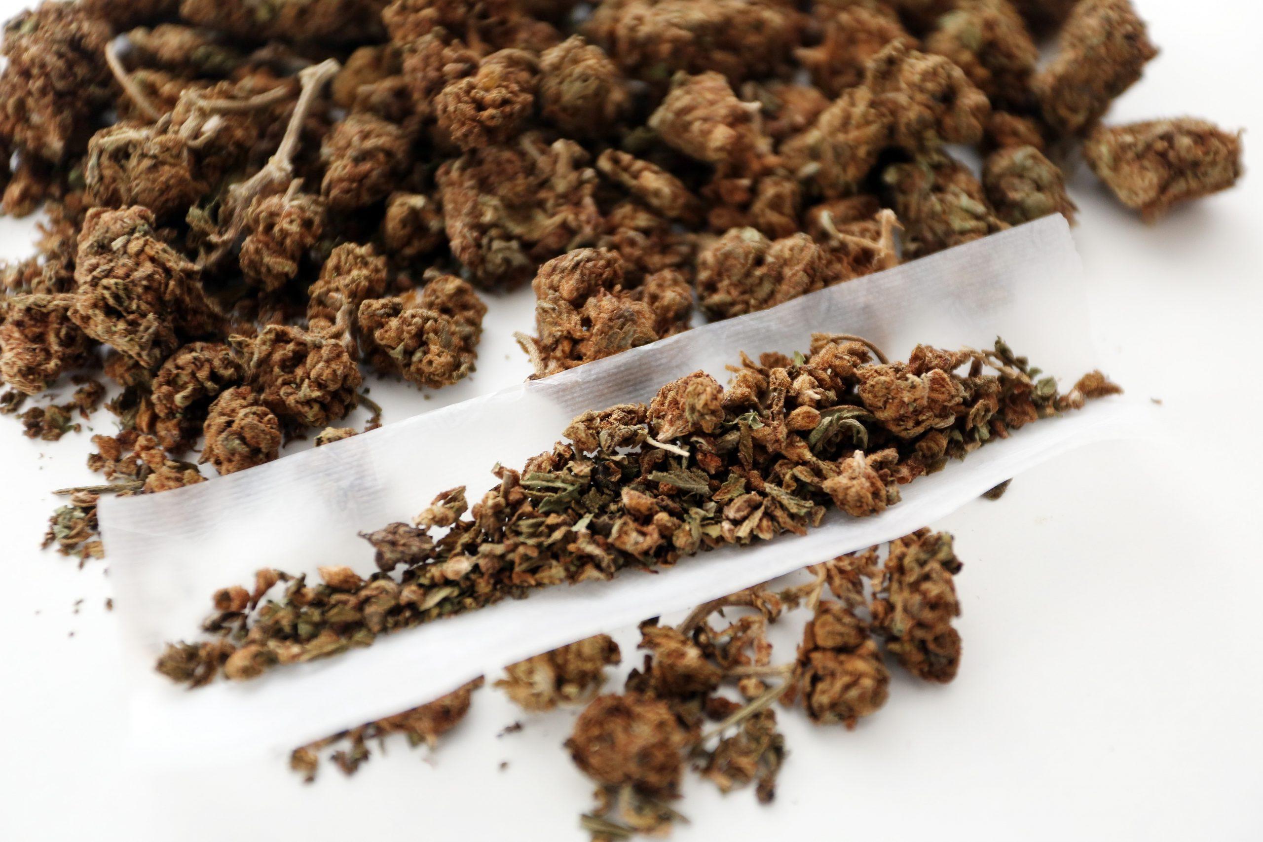 Zabrinutost izaziva porast konzumacije kanabisa s primjesama sintetičkih kanabinoida / Foto KRISTINA ŠTEDUL FABAC/PIXSELL