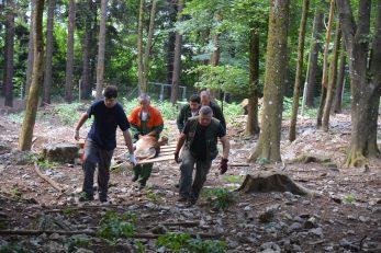 Broj srneće divljači u gateru kraj Lovačkog doma bit će smanjen na desetak jedinki, poručuju iz Hrvatskih šuma / Foto M. KRMPOTIĆ