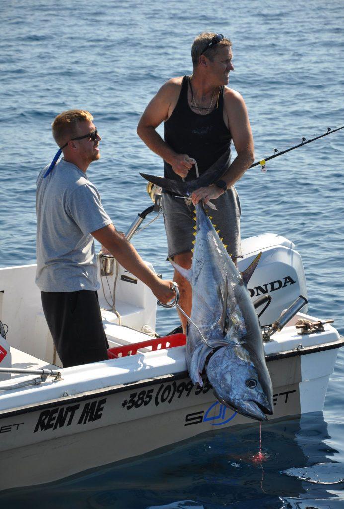 Ekipa Sharky na čelu s Maurom Lukšićem iz Jadranova pred Rijekom je ulovila tunu koju su procijenili na 60-ak kg / Foto M. TRINAJSTIĆ