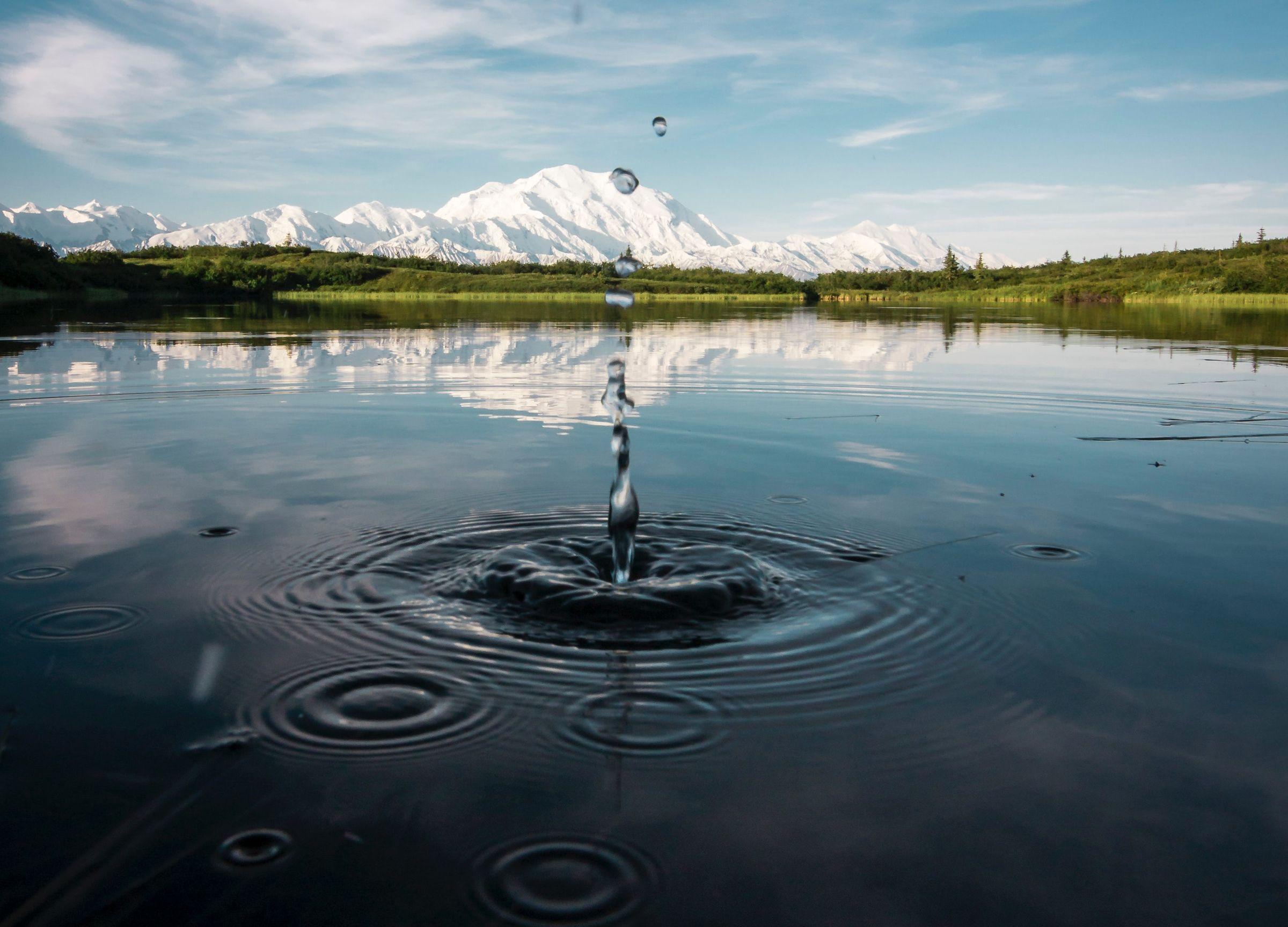 Iluistracija / Photo by Steve Halama on Unsplash