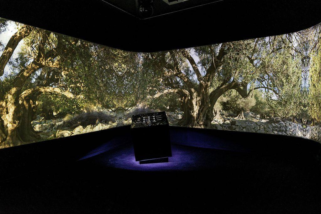U instalaciji masline su postale kreativna multimedijalna analogija procesa projektiranja s digitalnim medijima / Foto ATP