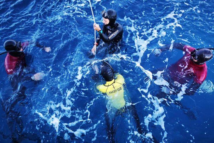 Adriatic Freediving