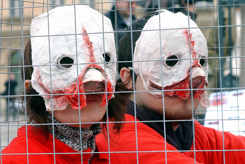 Jedan od prosvjeda Udruge Prijatelji životinja / Foto Davor Kovačević