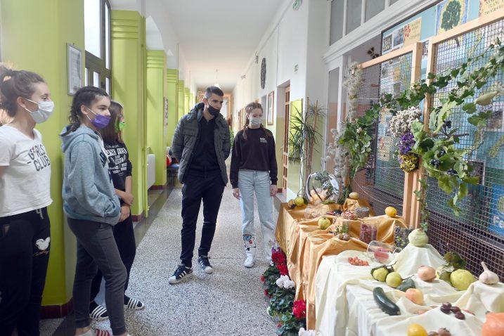 Učenici su prezentirali svoje znanje o murvi / SNIMIO: VEDRAN KARUZA